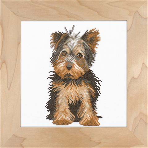 click here to view larger image of Yorkshire Terrier  - 14ct (counted cross stitch kit)