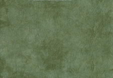 click here to view larger image of Conifer 28ct cashel 18x27 (Picture This Plus Hand Dyed Fabrics)