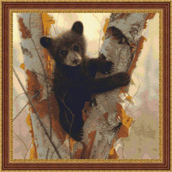 click here to view larger image of Curious Cub (chart)