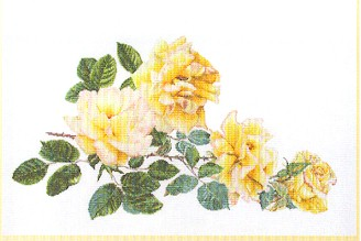 click here to view larger image of Peace Rose - Aida (counted cross stitch kit)