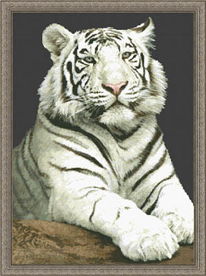 click here to view larger image of Stare, The (White Tiger) (chart)
