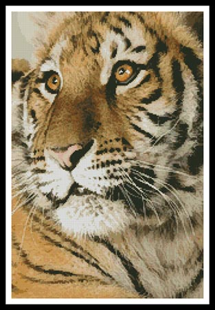 click here to view larger image of Bengal Tiger Cub (chart)