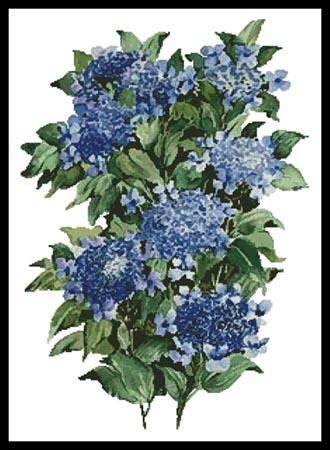 click here to view larger image of Blue Hydrangea  (Joy Waldman) (chart)