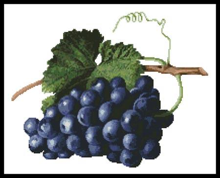 click here to view larger image of Fruit of the Vine (chart)