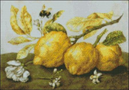 click here to view larger image of Garzoni - Three Lemons with a Bee (chart)
