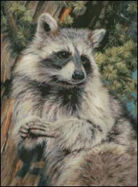 click here to view larger image of Mischief Raccoon  (chart)