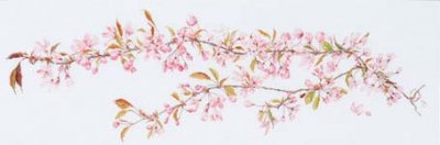 click here to view larger image of Sakura (On White 18ct Aida) (counted cross stitch kit)
