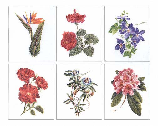 click here to view larger image of Flowers IV- 6 Designs (Floral Study 1) - Aida (counted cross stitch kit)