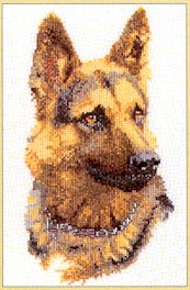 click here to view larger image of German Shephard - Aida (counted cross stitch kit)