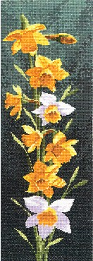 click here to view larger image of Daffodil Panel (counted cross stitch kit)