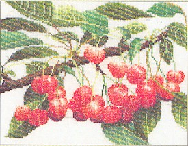 click here to view larger image of Branch of Cherries (counted cross stitch kit)
