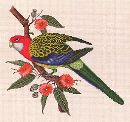 click here to view larger image of Rosella (chart)