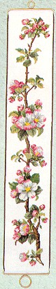 click here to view larger image of Apple Blossom Bellpull (counted cross stitch kit)