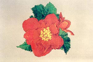 click here to view larger image of Begonias (chart)