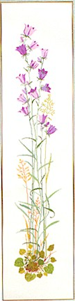 click here to view larger image of Grass With Flowers (counted cross stitch kit)