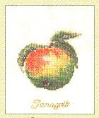 click here to view larger image of Apple (counted cross stitch kit)