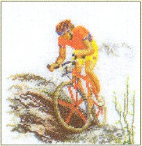 click here to view larger image of Biking (counted cross stitch kit)
