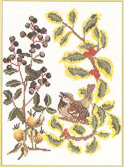 click here to view larger image of Bird With Berries - wren (counted cross stitch kit)