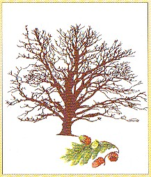 click here to view larger image of Oak Tree (counted cross stitch kit)