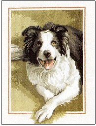 click here to view larger image of Border Collie Dog  (counted cross stitch kit)