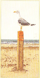 click here to view larger image of Seagull Lookout - Aida (counted cross stitch kit)
