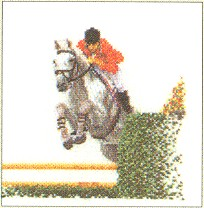 click here to view larger image of Show Jumping - Aida (counted cross stitch kit)