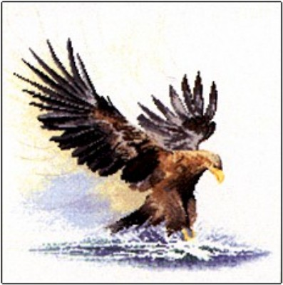 click here to view larger image of Eagle In Flight  (counted cross stitch kit)