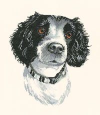 click here to view larger image of Jake (counted cross stitch kit)