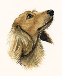 click here to view larger image of Jasper (counted cross stitch kit)