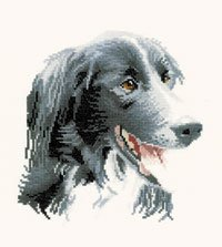 click here to view larger image of Todd - Animal Portraids (counted cross stitch kit)