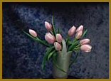 click here to view larger image of Pink Tulips (chart)