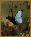 click here to view larger image of Butterfly - Heade - Great Masters Collection (chart)