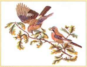 click here to view larger image of Birds on Branch - Aida (counted cross stitch kit)