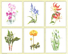 click here to view larger image of Six Floral Patterns (Floral Studies 6) - Aida (counted cross stitch kit)