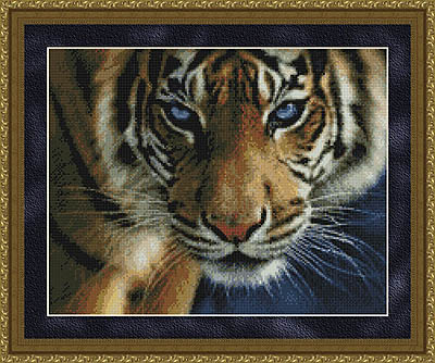 click here to view larger image of Blue Eyes (Tiger) (chart)