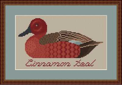 click here to view larger image of Cinnamon Teal (chart)