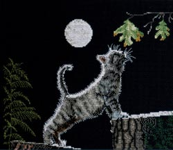 click here to view larger image of Maxs Moon (counted cross stitch kit)